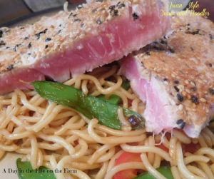 Asian Style Tuna and Noodles